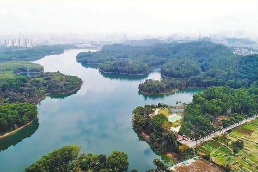 广东深圳茜坑水库
